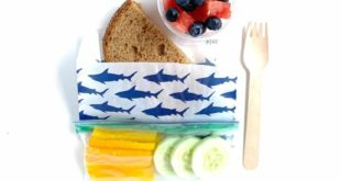 Complete Guide to Disposable Lunches for School and Daycare