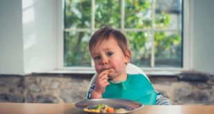 Wondering How To Feed Your Picky Toddler? Here's The Answer